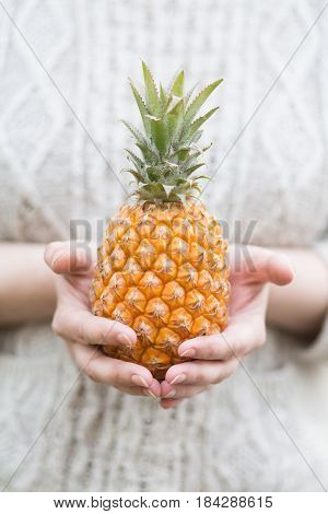Baby pineapple in hands. Pineapple. Copyspace. Summer photo concept