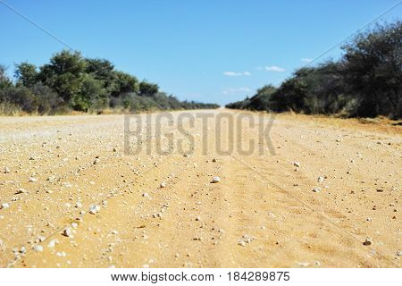 Endless sand track stretching to the horizon in Africa, framed by green savanna bushes.