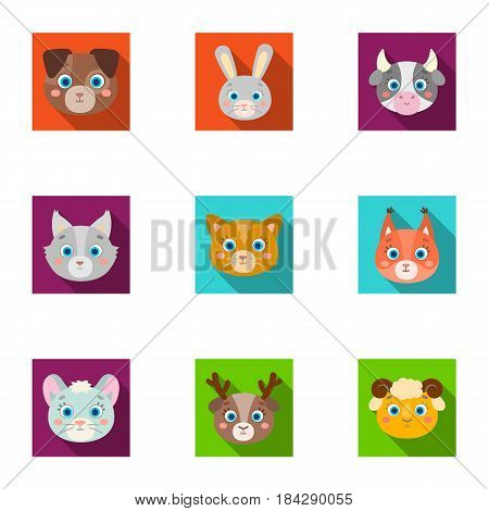 Wild and domestic animals. A set of pictures about animals. Animal muzzle icon in set collection on flat style vector symbol stock web illustration.