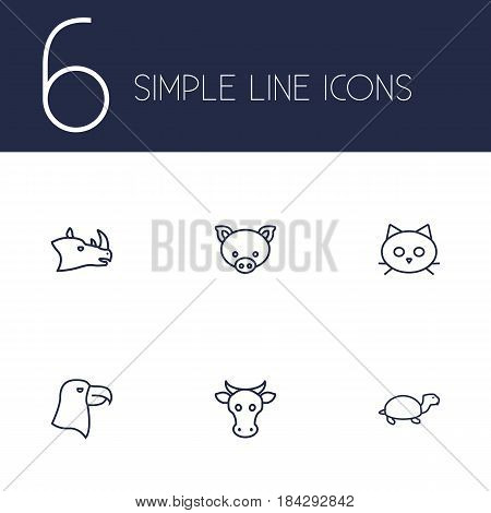 Set Of 6 Beast Outline Icons Set.Collection Of Eagle, Rhino, Cat And Other Elements.