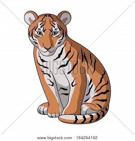 Young tiger.Animals single icon in cartoon style vector symbol stock illustration .