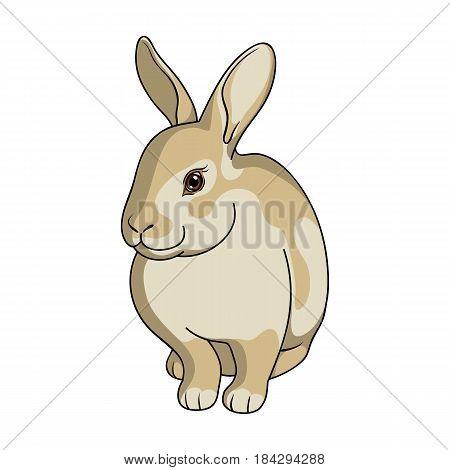 Gray rabbit.Animals single icon in cartoon style vector symbol stock illustration .