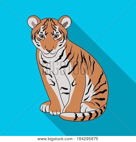 Young tiger.Animals single icon in flat style vector symbol stock illustration .