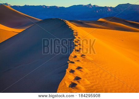 Sandy Desert in Mesquite Flat, USA. Along the edge of the sand dunes is a chain of deep tracks