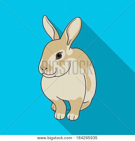 Gray rabbit.Animals single icon in flat style vector symbol stock illustration .