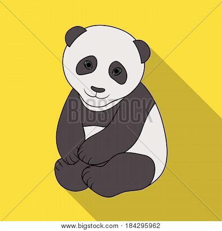 Panda.Animals single icon in flat style vector symbol stock illustration .