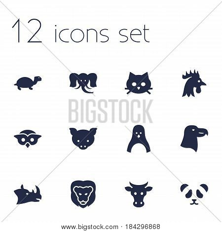 Set Of 12 Brute Icons Set.Collection Of Pussy, Kine, Rhinoceros And Other Elements.