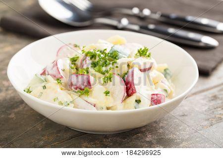 Fresh potato salad with radish and cucumber
