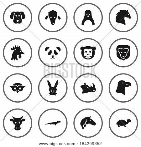Set Of 16 Brute Icons Set.Collection Of Night Fowl, Bear, Tortoise And Other Elements.
