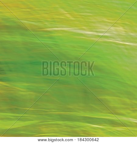 Motion Blurred Bright Meadow Grass Background Abstract Green Yellow Amber Horizontal Texture Pattern Copy Space