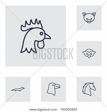 Set Of 6 Beast Outline Icons Set.Collection Of Owl, Horse, Cock And Other Elements.
