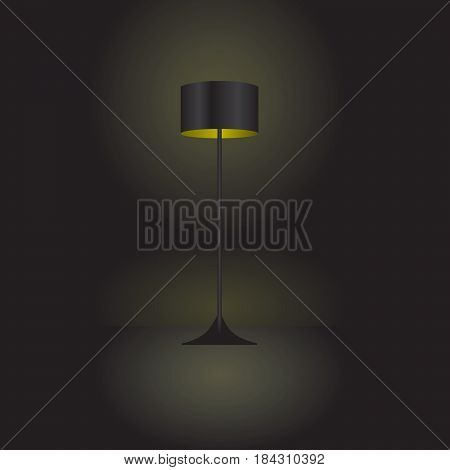 Included floor lamp in a dark room.