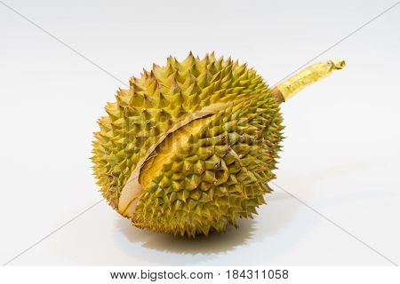 Fresh Cut Durian on white background a close-up view of Durian Durian D158