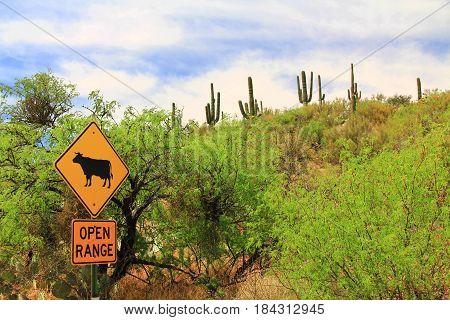Open range cattle crossing warning sign along a road in Arizona.