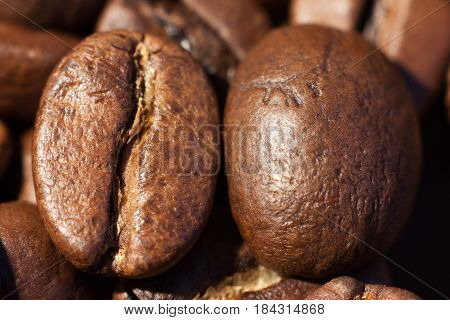 Two brown roasted coffee beans close-up macro photo natural food background selective focue shallow depth of field.