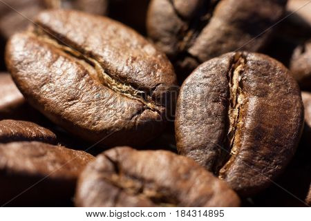 Brown roasted coffee beans close-up macro shot natural food background selective focue shallow depth of field.