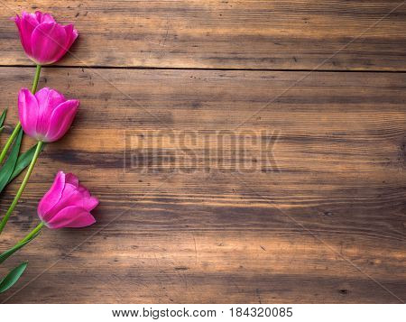 Pink tulips, floral arrangement on wooden background from old boards and a space for messages. Background for Mother's Day, 8 March and other greeting cards for lovely women. Soft focus, top view.