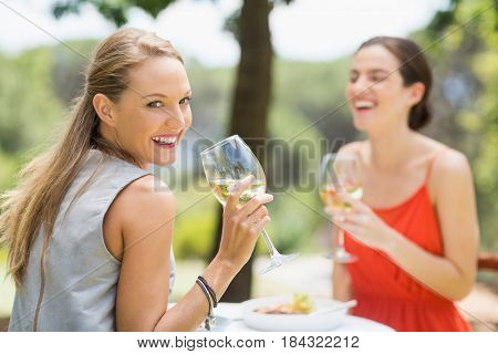 Friends laughing while drinking wine in the restaurant