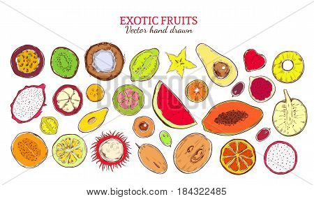 Colored sketch natural exotic products collection with fresh tropical fruits and berries isolated vector illustration
