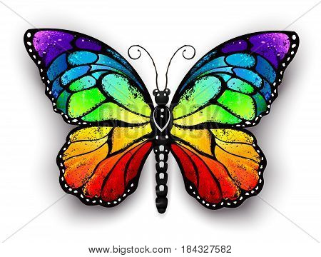 Realistic monarch butterfly in all the colors of the rainbow on a white background. Rainbow butterfly.