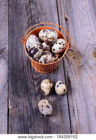 Fresh quail eggs in a bucket top view
