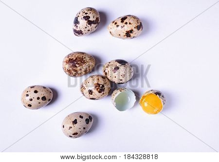 Quail eggs on a white surface top view
