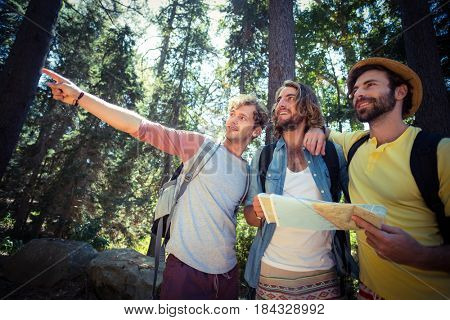 Friends with a map looking at a direction in forest on a sunny day