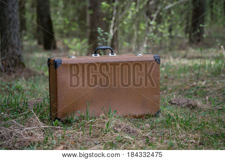 Vintage brown suitcase standing in the grass in the coniferous forest
