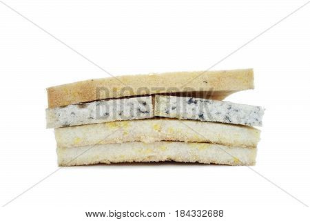 Isolated on white slices of foam rubber