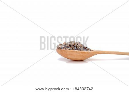 Isolated on white wooden spoon with lavender