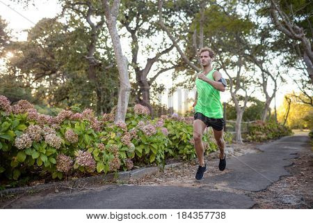 Jogger jogging on pathway in park on a sunny day