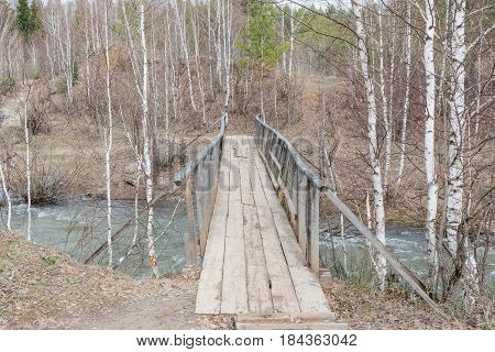 Wooden Bridge. The Bridge From A Tree Through A Stream.