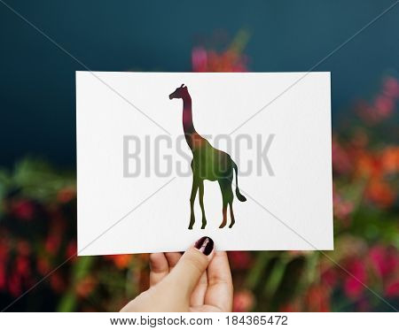 Human hand holding wild life giraffe perforated paper craft in nature