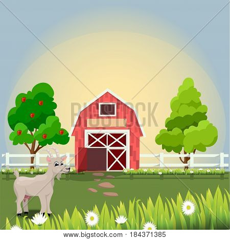 Original vector illustration of farm pet goat , cattle, milk and goat meat on farm with fruit trees and chamomile, Farm animals collection