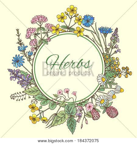 Vector illustration in circle shape. Herbs background, fresh leaves and different flowers. Frame with place for your text. Round emblem herbs organic products and badge for organic herbs