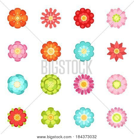 Flat style different flowers in garden. Summer vector icon set isolate on white background. Spring flower blossom, illustration of flower with color petals