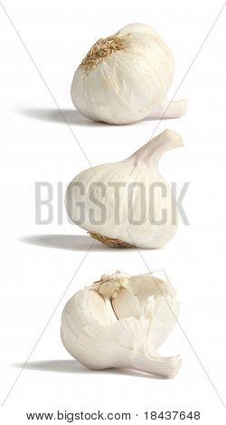 Garlic bulbes