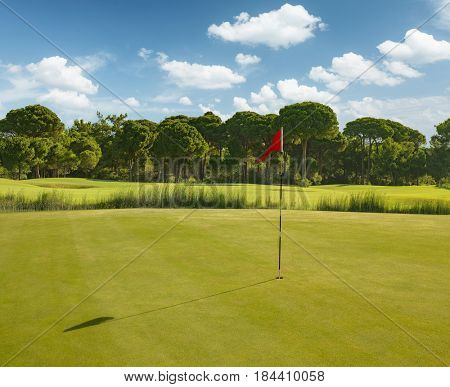 Golf course during summer