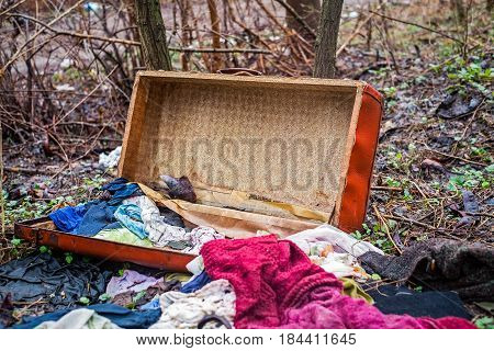 Old clothing thrown in nature, closeup view