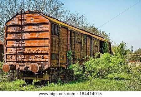 Railway wagon captured by vegetation, closeup view.