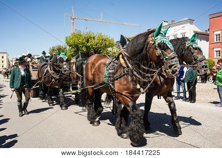 Tittmoning,Germany-April 30,2017:A horse drawn carriage carrying a brass band dirves by at the annual St.George's parade