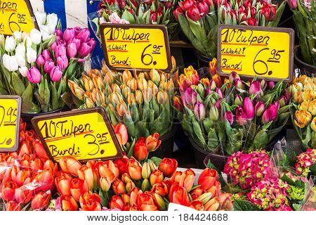 Tulips on the flower shop market Bavaria, Germany