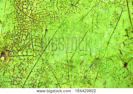 Vibrant Green Abstract Painting, Grunge Texture Background