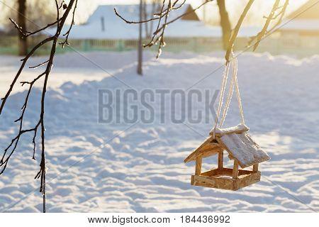 the bird feeder at sunrise in winter garden