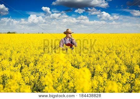 Farmer Standing in rapeseed and Controlling The Growth of Plants