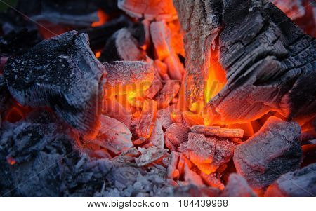 Smoldering ashes of charcoal. Burning coal. BBQ barbecue.