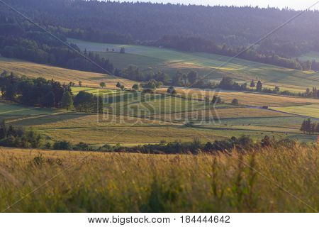 Farm land in summer. Countryside landscape with meadow