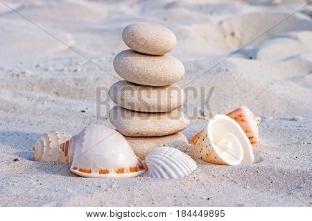 Feng shui rocks white stones in balance surrounded by different species of sea shells on the sand of the beach
