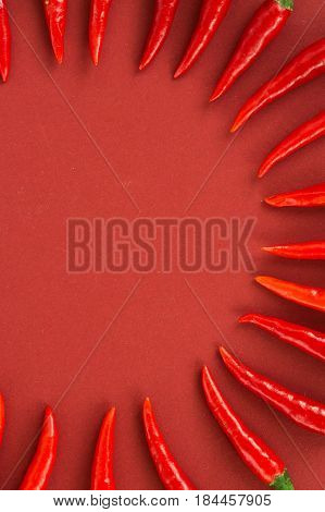 red hot chili peppers, popular spices concept - pods of red hot chili peppers in beautiful semicircle composition on red background, top view, flat lay, free space for text