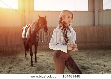 Beautiful elegant young blonde girl standing near her black horse dressing uniform competition white blouse shirt and brown pants. Indoor portraite in riding hall.